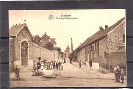 Berthem  / De Eegen Hovenstraat - Bertem