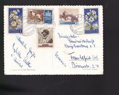 5 Timbres  San Marino   Dog Chiens      Fleurs       Sur Carte Postale Année 1956 - Briefe U. Dokumente