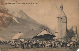Vacheresse Le Champ De Foire Et Le Fion (état) - Vacheresse