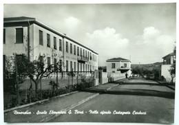 DONORATICO (LIVORNO) - Scuole Elemntari G. Borsi, Sfondo Castagneto Carducci - Livorno