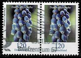 Bund 2019,Michel# 3447 O Blumen: Traubenhyazinthe, Waagerechtes Paar - Used Stamps