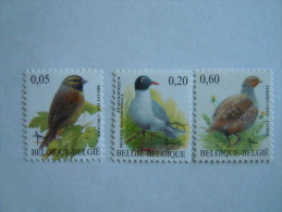 België Belgique Belgium 2005 Vogels Oiseaux Buzin Cirigors Meeuw Patrijs Bruant Perdrix Mouette COB 3379-3381 MNH ** - 1985-.. Oiseaux (Buzin)