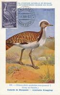 Maximum Card Sahara Espanol Villa Cisneros 1962 Oiseau Outarde De Macqueen Dessin Hubert Dupond Same Stamp As The Card - Western Sahara