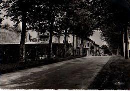 01 MEXIMIEUX Quartier St Julien Maisons Neuves - Altri Comuni
