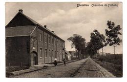 Ellezelles: Chaussée De Flobecq - Ellezelles