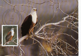 Maximum Card Ivory Coast Cote Ivoire 1983  Fish Eagle Rapace . Cachet Club Philatelique Abidjan - Ivoorkust