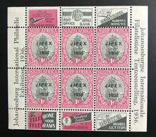 AFRIQUE Du SUD - 1936 - NEUF*/MH - Bloc Mi BF 2 - JIPEX - Hojas Bloque