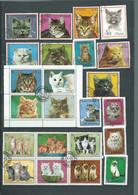 Lot De 23 Timbres , Chats Divers Oblitérés -  Pal 3701 - Domestic Cats
