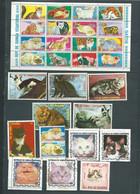 Lot De 29 Timbres , Chats Divers Oblitérés -  Pal 3703 - Domestic Cats