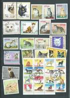 Lot De 36 Timbres , Chats Divers Oblitérés -  Pal 3705 - Domestic Cats