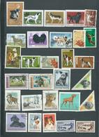 Lot De 29 Timbres , Chiens  Divers Oblitérés -  Pal 3804 - Dogs