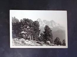 TRENTINO ALTO ADIGE -BOLZANO -ORTISEI VAL GARDENA -F.G. LOTTO N°754 - Verona