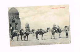 Tombeaux Des Khalifes. - Abu Simbel