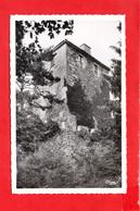 63 -  Saint ANTHEME : Château De La Roue - Other Municipalities