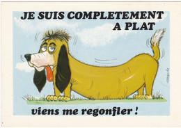 JE SUIS COMPLETEMENT A PLAT    Viens Me Regonfler!   Signé Alexandre - Humor