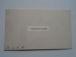D176792  Carte De  Visite - Visiting Card  Ca 1910-20's  - LEVICZKY Aladár   Budapest  Hungary - Cartoncini Da Visita