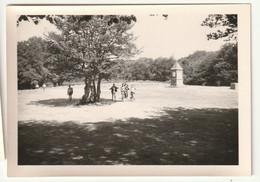 Saint-Léger-Sous-Beuvray 71990 - Scouts - Monument De L'oppidum Gaulois De Bibracte - Unclassified