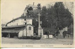 AMBERIEU  Chateau Des Echelles - Altri Comuni