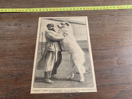 Annee 20/30 Bibelot Chien Des Pyrénées  Exposition Canine - Sin Clasificación