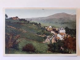 CPA - 12 - FIRMY - La Forézie Et Le Puy De Volf - Firmi