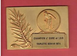 MEDAILLE CHAMPION D EURE ET LOIR TRIPLETTE SENIOR 1974 PETANQUE JEU DE BOULES - Bowls - Pétanque