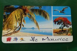 K9/ ILE MAURICE MAURITIUS PLAGE DE WOLMAR  TIMBREE  AFRIQUE - Maurice