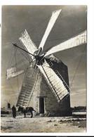 Formentera - Molen Moulin Mill Mühle. - Windmolens