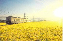TRAINS Train - JAPON Japan : OKADA Local Line - CPM GF - Zug Trenes Bahn Trein Treni Trenes Treni Trenes - Eisenbahnen