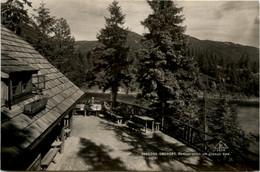 Tragöss-Oberort/Steiermark Und Umgebung -    Restauration Am Grünen See - Other