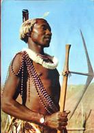 Swaziland : Guerrier - Swaziland