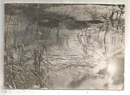 Photographie J. BELIN ,reporter , GARCHES   , 180 X 130 Mm , étang , Paysage, Frais Fr 1.95 € - Lugares