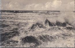 St. Idesbald - De Storm - Koksijde