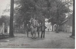 Helmond - Helmond