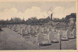 Postkaart/Carte Postale - Meensel Kiezegem - Kerkhof Van Politieke Gevangenen  (C448) - Tielt-Winge