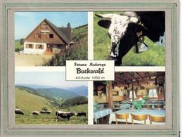 CPSM - (68) Environs De BREITENBACH - Multivues - Aspect De La Ferme-Auberge-Buchwald De Jean Wehrey En 1980 - Otros Municipios