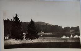 Vues De L'Ain - Le Lac Genin - Le Lac Et La Forêt - Sin Clasificación