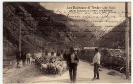SAN DALMAZZO DI TENDA (VALLE ROIA) STRADA NAZIONALE AL CONFINE ITALO-FRANCESE - CUNEO - 1912 - Vedi Retro - F.P. - Cuneo