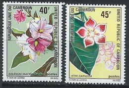 Cameroun YT 526-527 Neuf Sans Charnière - XX - MNH - Cameroon (1960-...)