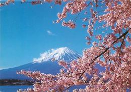 Japon - Mont Fuji - Cerisiers En Fleurs - Voir Timbre Japonais - Nippon - CPM - Voir Scans Recto-Verso - Altri