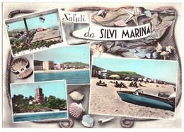 1966 SILVI MARINA    SALUTI   CONCHIGLIE   TERAMO - Teramo