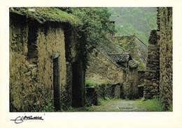 12 Najac Bourg Médiéval Pierres Oubliées (Carte Vierge) - Najac