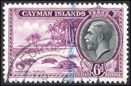Cayman Islands 1935 6d Turtles Fine Used. - Cayman Islands