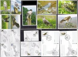 MOLDOVA 2016 BIRDS OF PREY - Aquile & Rapaci Diurni