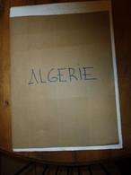 ALGERIE : Timimoun, El Goléa, Igli, Taghit, Beni-Abbès, Takoumbaret, El Oued (Souf), Touggourt, Rouffi, Constantine, Etc - Unclassified