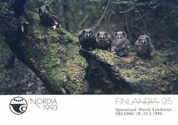 525  Hiboux, Hologramme: Entier (c.p.) Finlande, 1993 - Owl, Hologram Stationery Postcard From Finland. Hibou - Búhos, Lechuza