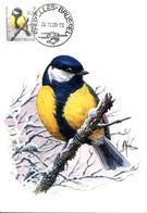 15200171 BE 20001204 Bx; Oiseau De Buzin; Mésange Charbonnière; CM  Cob2966 - Other