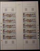 TAAF N°350 2008 100ans De Port Jeanne D'arc Feuille Entière - Unused Stamps