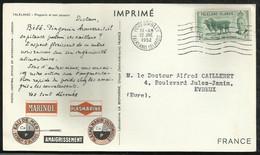 CARTE PUBLICITAIRE . MARINOL . PLASMARINE . AMAIGRISSEMENT . 12 JUIN 1952 . PORT STANLEY . - Falkland Islands