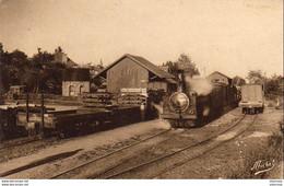D19  LAPLEAU  La Gare - Le Train ( Ligne Tulle - Lapleau ) - Sonstige Gemeinden