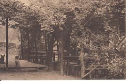 Overboelare - Deux Acren   Au Bois Chez Leander - Vue Latérale Du Jardin De Dégustation    Geraardsbergen Grammont - Geraardsbergen